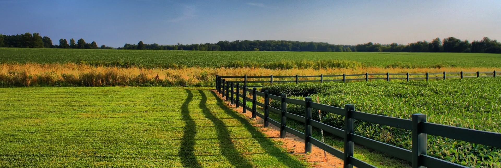 fazenda_verde_25d1863f452e0d7ad668949d3c91a040_Rural_land